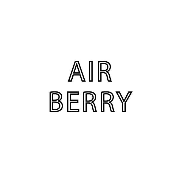 HAIR MAKE AIR BERRY